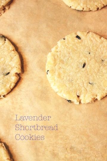 lavendershortbreadcookies